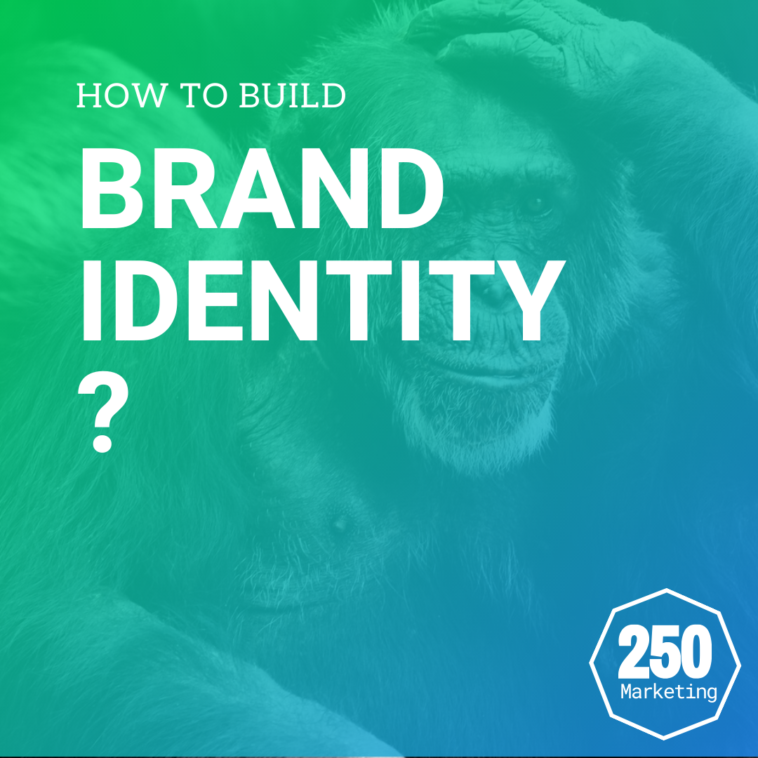 how-do-you-build-a-brand-12-250-marketing
